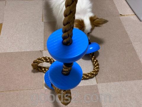 太くて頑丈なロープ